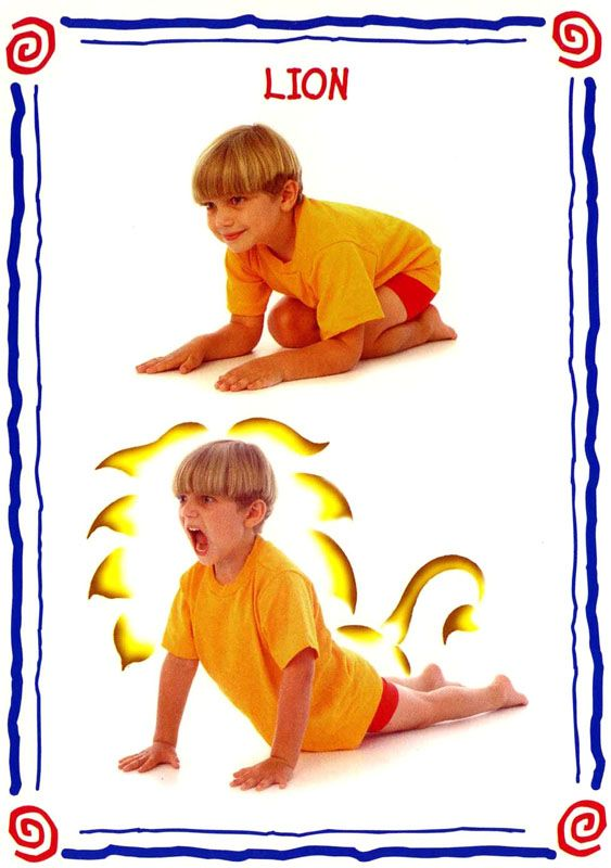 lion modèle