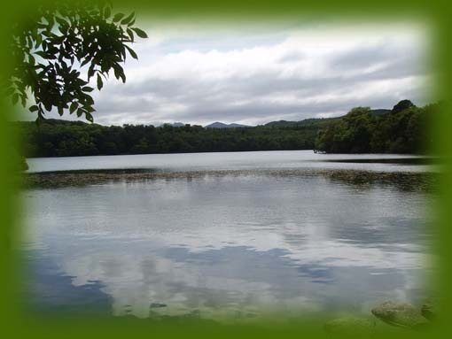 Castlewellan... again,camping memories, but imagine waking up with this as your view....