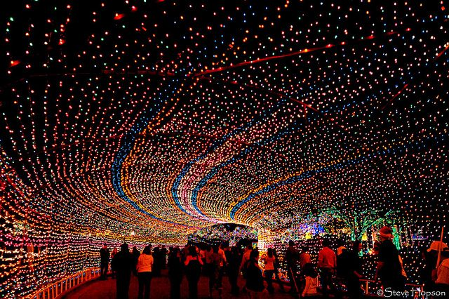 Trail of Lights, Austin Texas- one of the best things to do at christmas time!