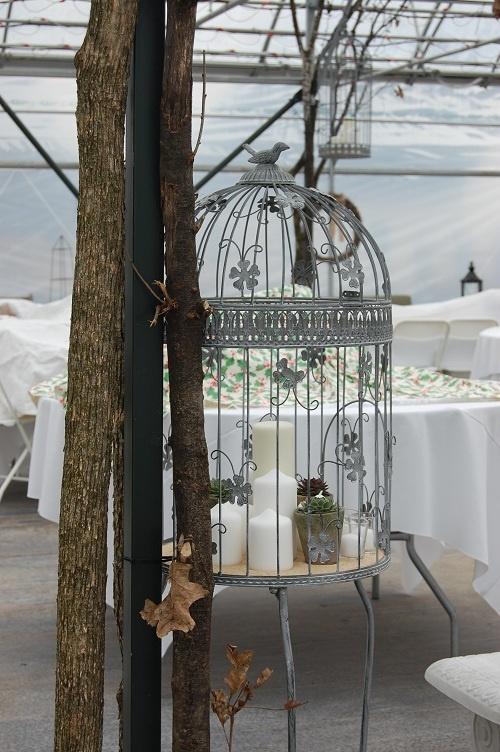 Greenhouse wedding: birdcage with candles and succulents