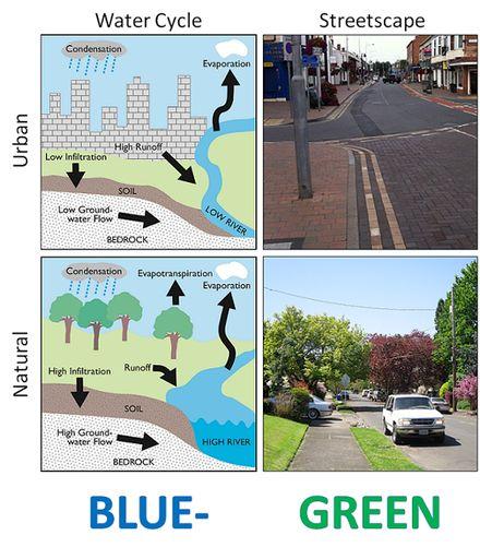 Blue-Green Cities - Wikipedia, the free encyclopedia
