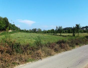 #Agricultural land for sale in #Kolomza #Ulcinj!