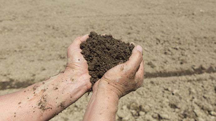 土づくりの基本まとめ 家庭菜園初心者ガイド 野菜のうま味を左右する