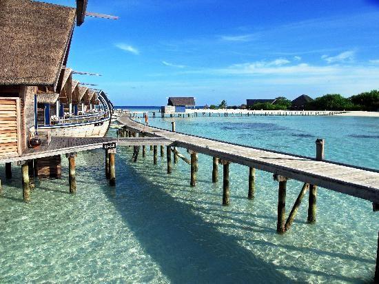Top 25 Hotels in the World (Travelers' Choice 2015) Picture: Cocoa Island by COMO Cocoa Island, South Male Atoll, Kaafu Atoll, Maldives.