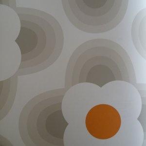 WALLPAPER Online store. Orla Kiely by Harlequin Orla Kiely by Harlequin Orla Kiely by Harlequin 110403 | Home Interiors