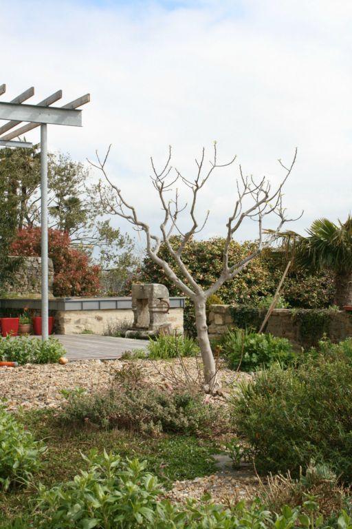 31 best Jardin images on Pinterest | Paisajes, Contemporary patio ...