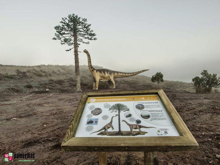 Reconstrucción y panel interpretativo de saurópodo (12 m de largo y 5,5 m de alto) y araucaria (10 m de alto) en el espacio anexo al tronco fósil de Igea.