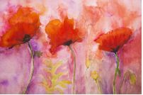 Flower Pictures | Wall Art Prints