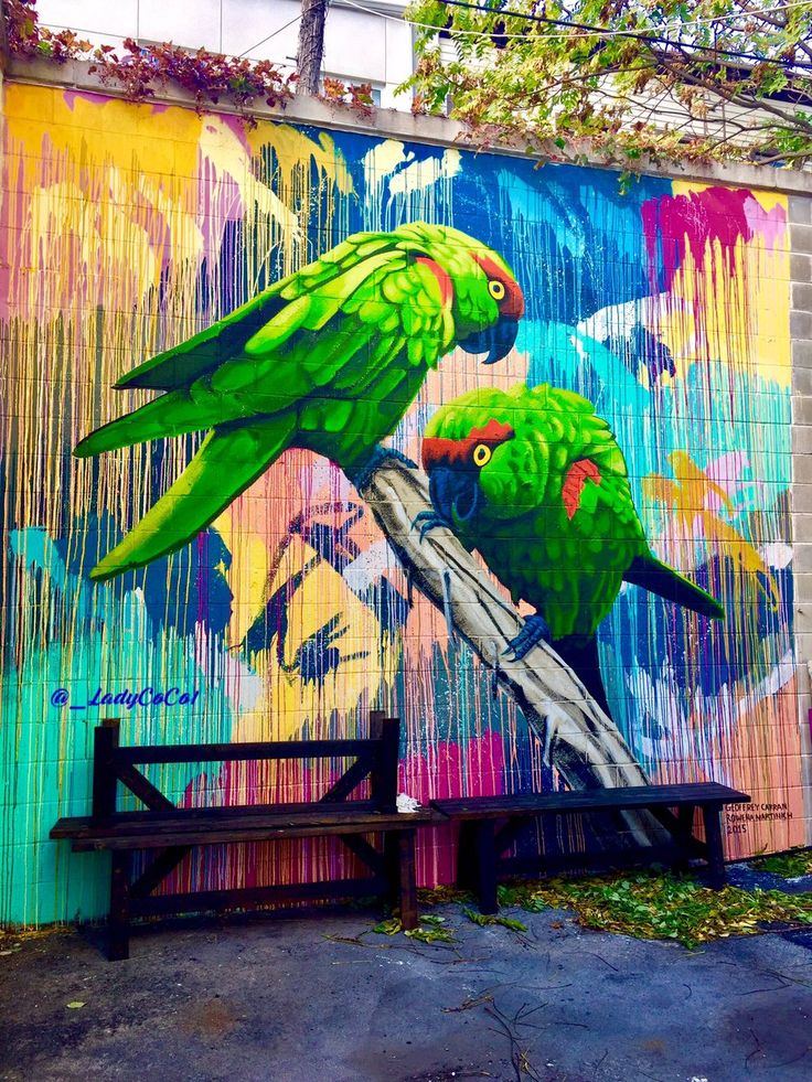 I love how the running paint in the background of this Street Art reminds you of the rain forest. AMAZING !