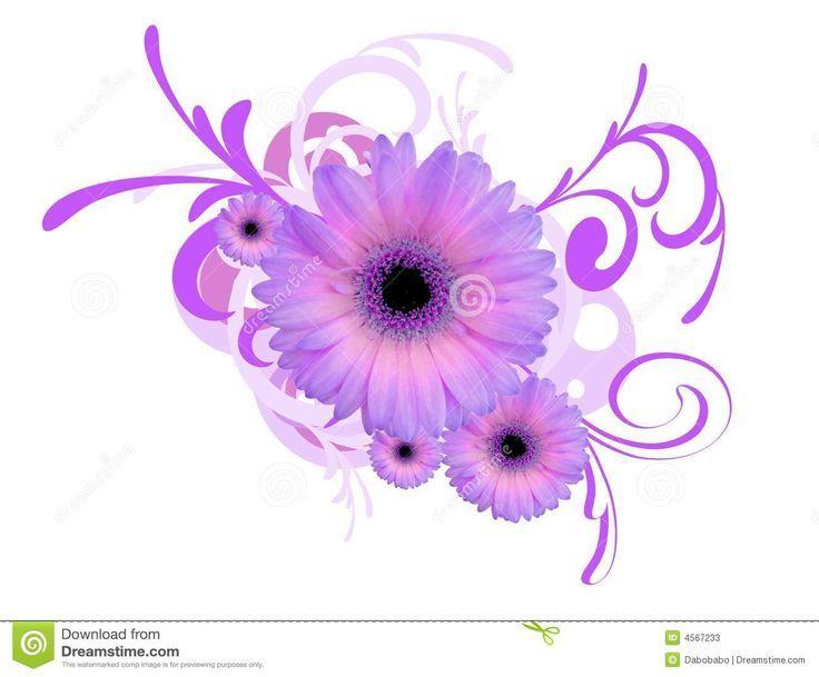 Gerbera Daisy Background Stock Photos Image 4567233 Purple Flower Tattoos Gerbera Daisy Tattoo Daisy Tattoo