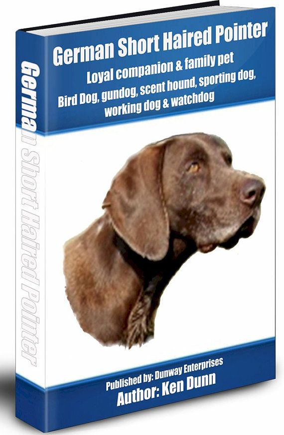 German Short Haired Pointer: Owning & Training - Bird Dog, Gun Dog, Scent Hound, Sporting Dog, Working Dog, Watch Dog - http://dunway.us/kindle/html/german_short_haired_pointer.html