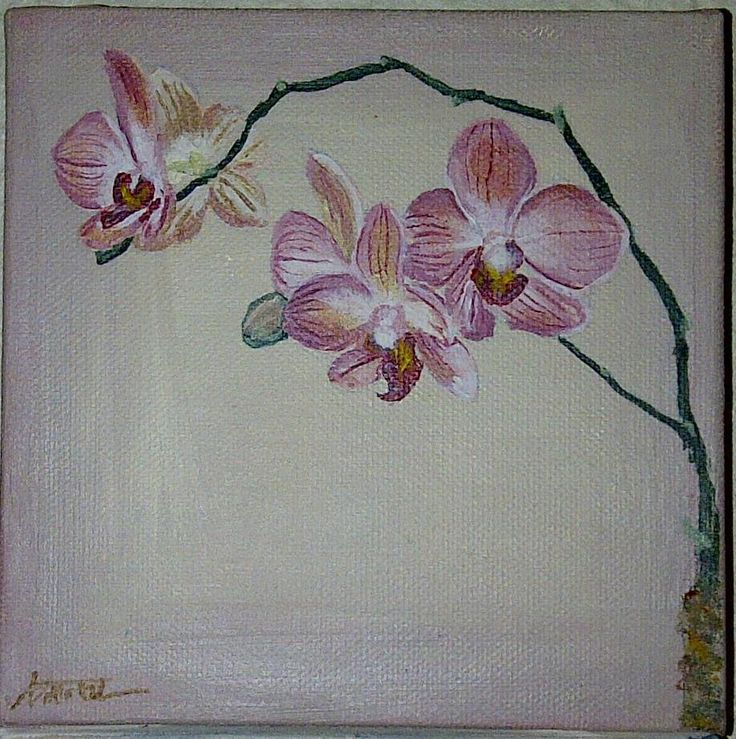 Orchid Painting 15x15cm Acrylic on Canvas