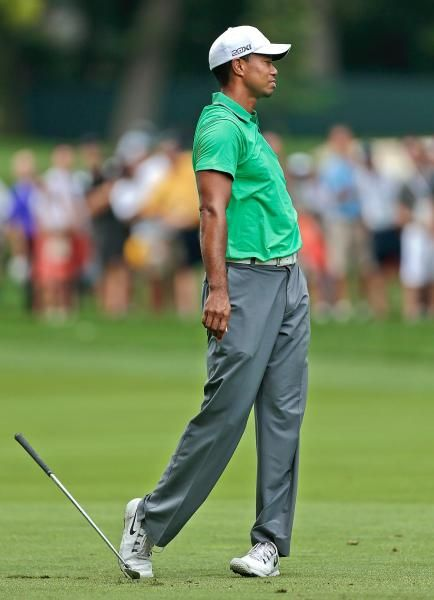 How big is tiger woods dick