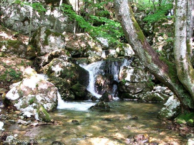 Ramnuta Mare creek - #Mehedinti_Mountains, #Romania