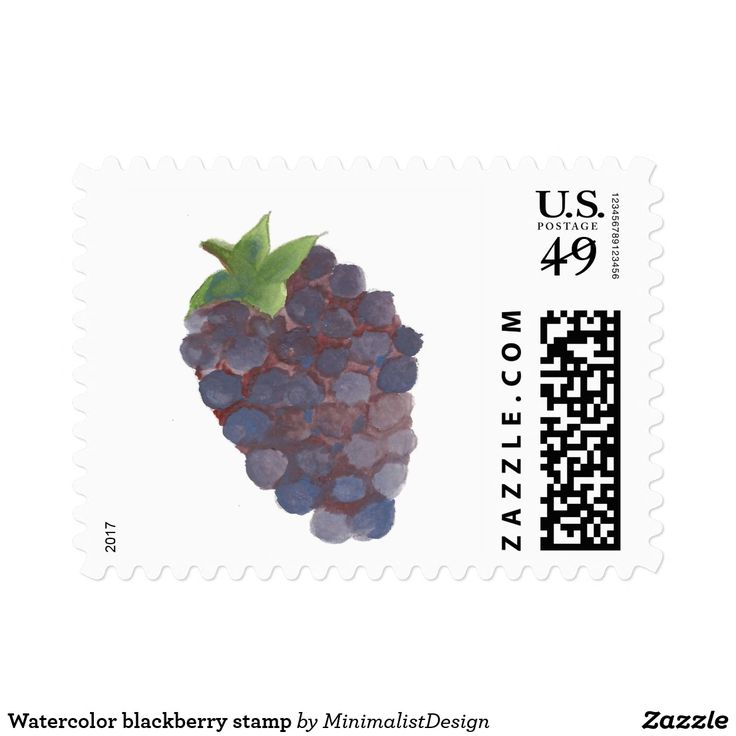 Watercolor blackberry stamp Embellish letters, photos or envelopes with this set of blackberry watercolor stamps! blackberry stamps, fruit stamps art, beautiful fruit stamps, minimalist blackberry stamp, blackberry watercolor stamps, blackberry fruit art, blackberry watercolor painting, postage stamps online buy, custom stamps online, custom stamp order,Copyright © 2017, Anca Ioviţă #zazzle #minimalism
