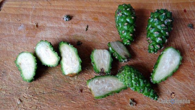 Cukromania: Syrop z szyszek sosny