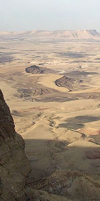Deserts generally get 20 centimeters of rain every year. Deserts have almost no plants and no water.