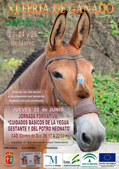 Los días 23,24 y 25 de Junio se celebra en Almáchar la XI Feria de Ganado Equino.      Esta feria es una de las pocas de estas características que se celebran en nuestra comarca,   #almachar #feria de ganado #ganado equino