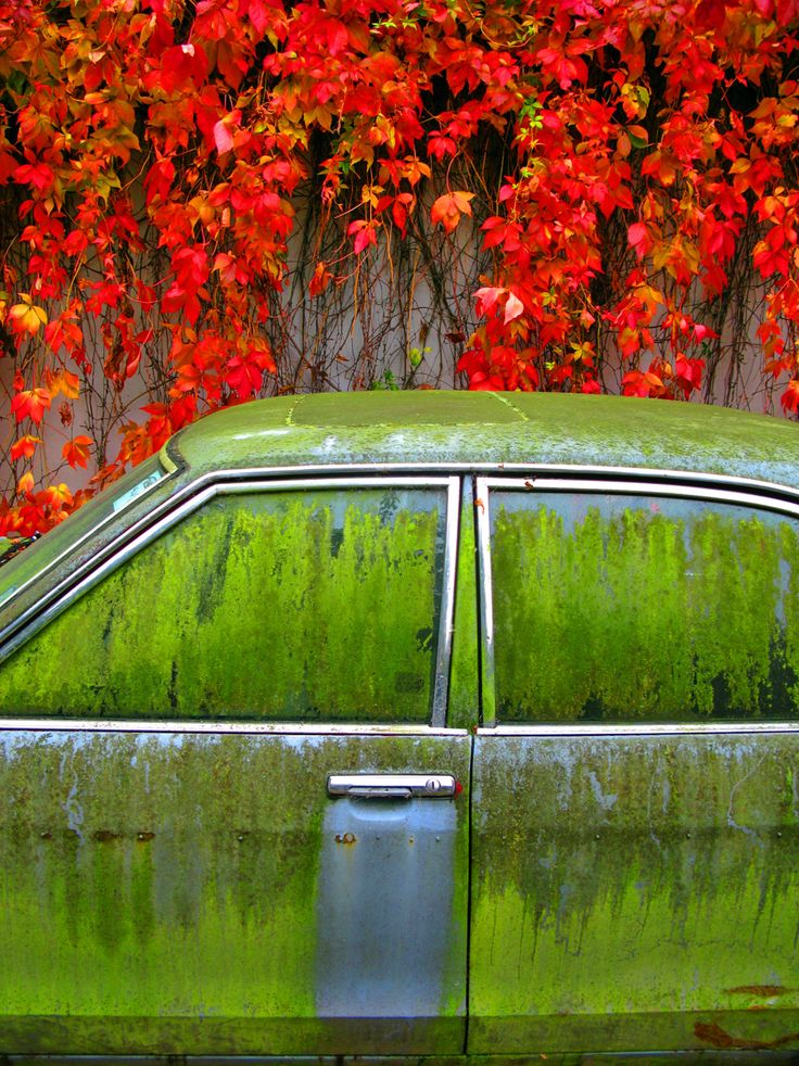 TIME: An image with beautiful natural colours i was surveying for work when i found this moment and only got the one single shot due to the meeting with my client, the car and the climber was removed one week after the image was taken... UK. (Photo and caption by Simon Belham/Places/National Geographic Photo Contest)