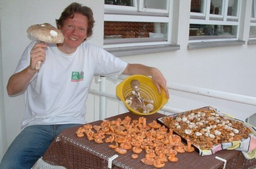 Pilze einlegen ist eine feine Sache: In Essig oder in Oel sind sie koestlich. Hier liest Du, wie man's macht