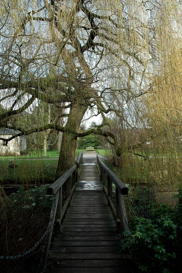 Bishop's Palace Grounds, Wells, Somerset, UK    Snow's Gone, Spring's Here by EarthHart