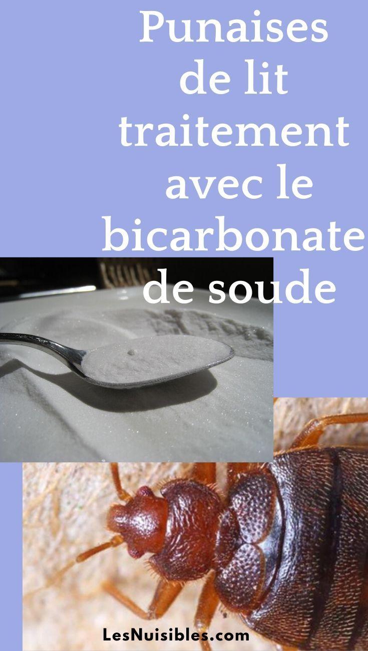 Punaises De Lit Traitement Avec Du Bicarbonate De Soude Punaises De Lit Anti Punaise De Lit Bicarbonate De Soude