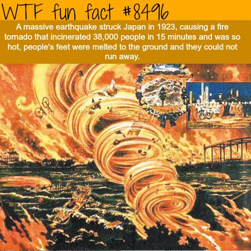 25 Weird and Random Facts to Make You Feel Smarter - Wow Gallery