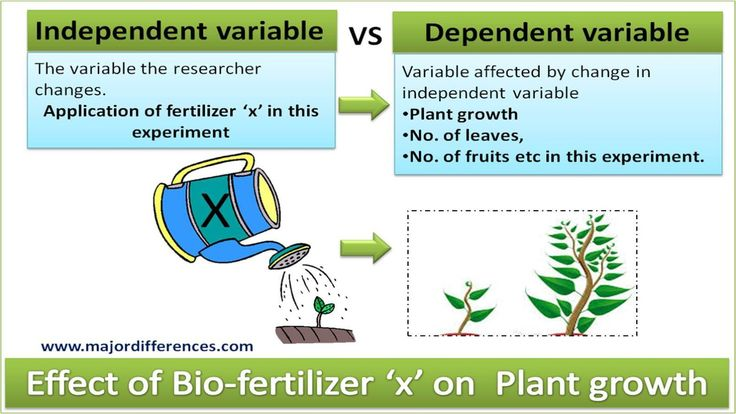 Independent Variable Vs Dependent Variable Explained With