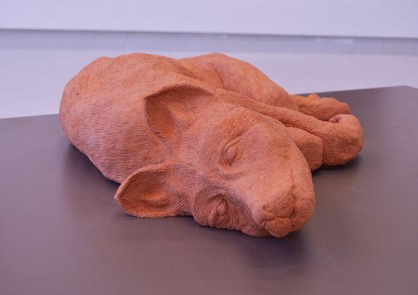 Hand built and hand carved terracotta fox, 17cmx70cmx50cm ceramic clay