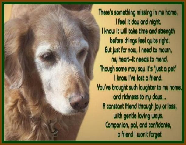 He S Just My Dog Poem