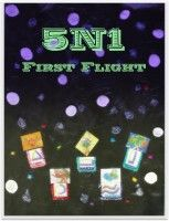 5N1 - First Flight, an ebook by Rev. Dr. Juanita Lewis, PhD. at Smashwords