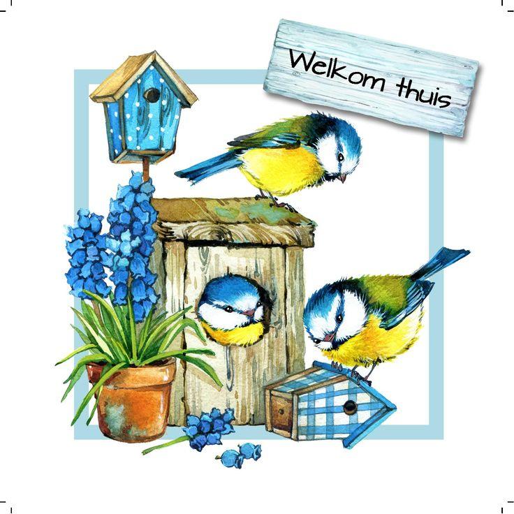 Design: Fastcards www.fastcards.nl - Welkom thuis vogelhuisje