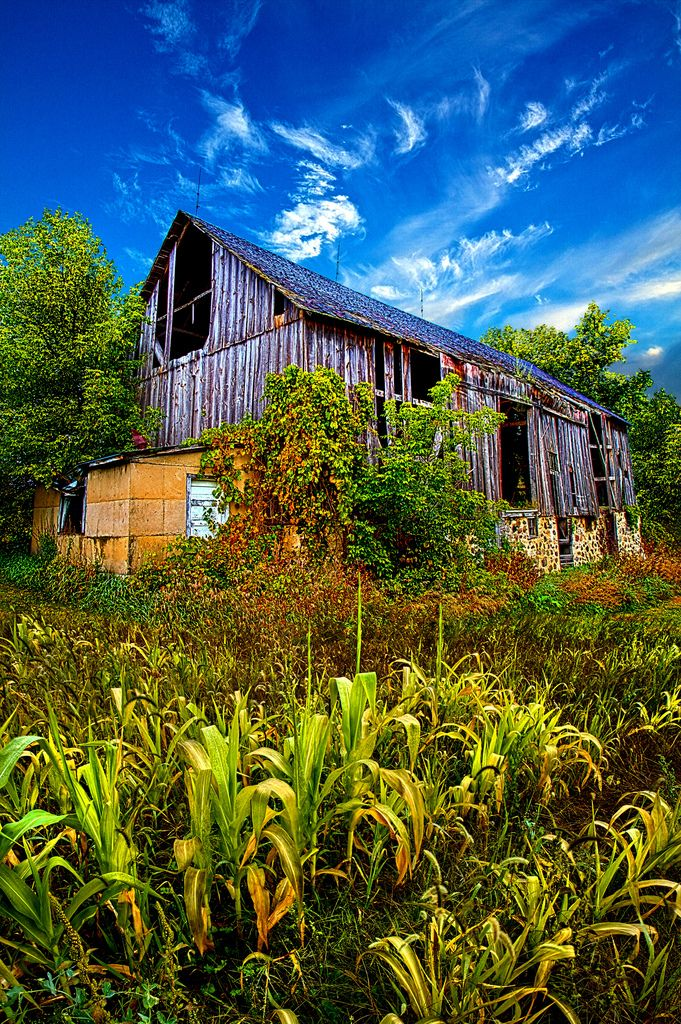 Refuge - barn and corn - Wisconsin