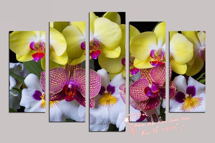 High Quality White Orchid Painting Promotion-Shop for High Quality ...