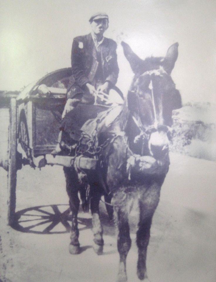 1950. Ζήσης Ζακυνθινός ο οδοκαθαριστής με το κάρο του.