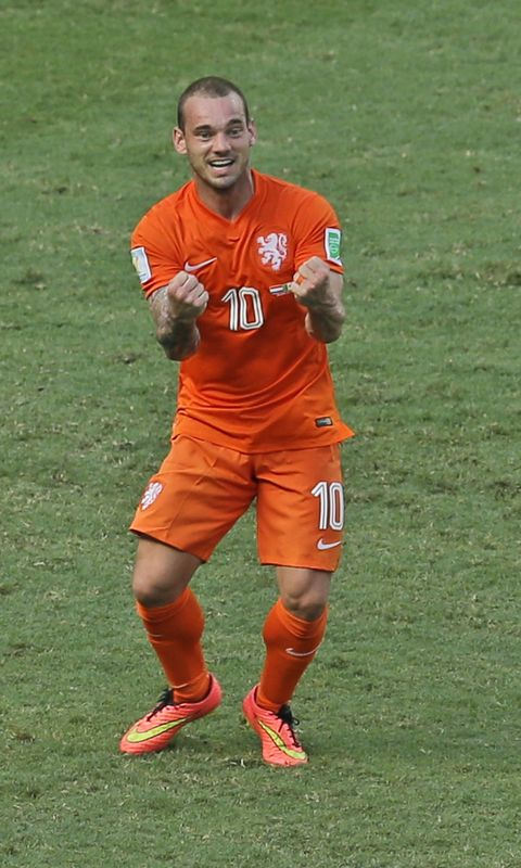 Netherlands' Wesley Sneijder celebrates after the referee decided on  penalty during the World Cup round of 16 soccer match between the  Netherlands and ...