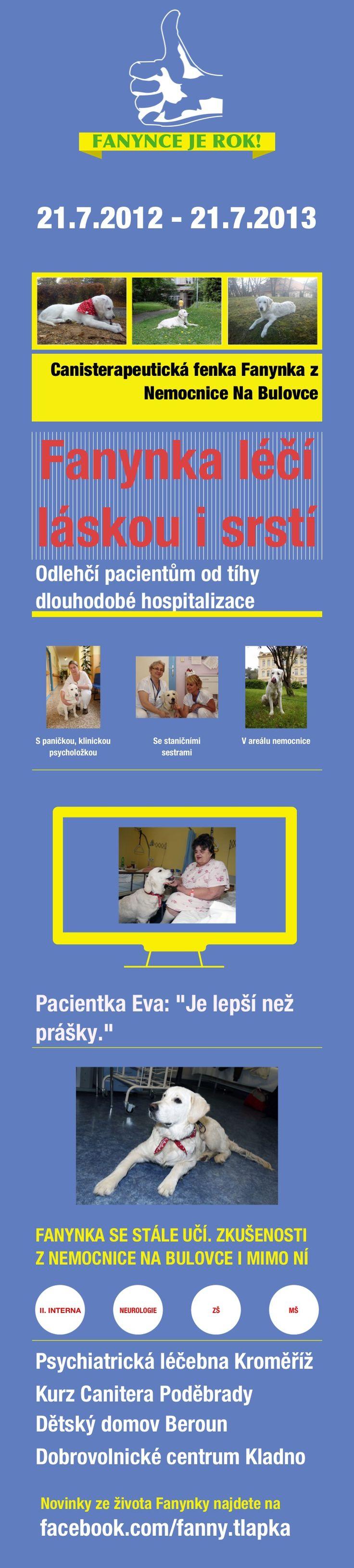 Fanynce je rok #canisterapie. Důležitá informace! Všechny aktivity, které Fanynka zatím vykonává, jsou tréninkové. Ještě nejde o canisterapii. Canisterapeutickým psem se totiž může stát až po složení příslušných zkoušek a to až dovrší věk 18ti měsíců. Nemocnici Na Bulovce Fanynku zapůjčila obecně prospěšná společnost Pomocné tlapky.