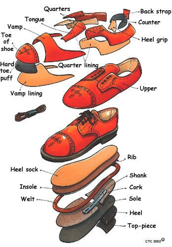 Parts of a shoe                                                                                                                                                     More