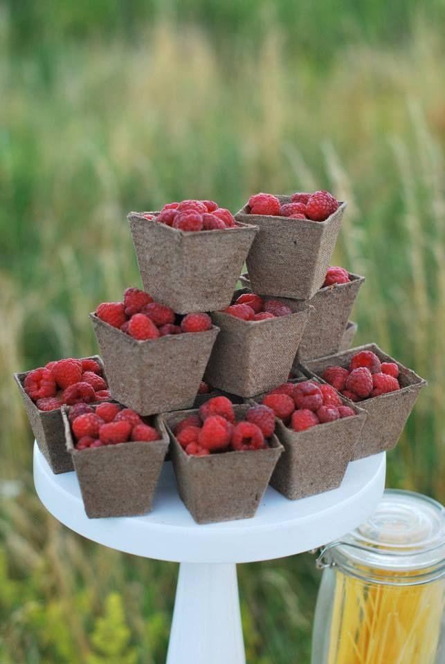 ślub#eko#maliny#słodkości#stół#dodatki#owoce#aranżacja#rustykalnie#sielsko#naturalnie#lato
