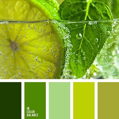 Палитра сочетаний для зеленого цвета