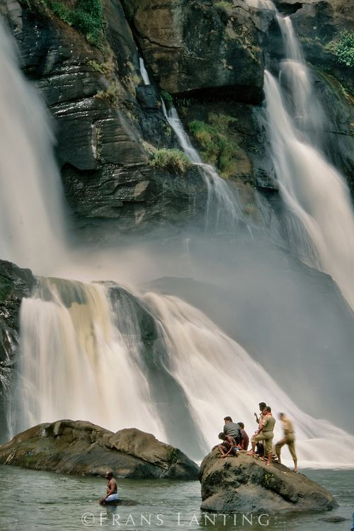 Explore the list of #Kerala #Waterfalls. http://www.sreestours.com/blog/famous-waterfalls-in-kerala-04