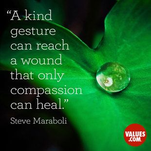 An inspiring quote about #compassion from www.values.com #dailyquote #passiton