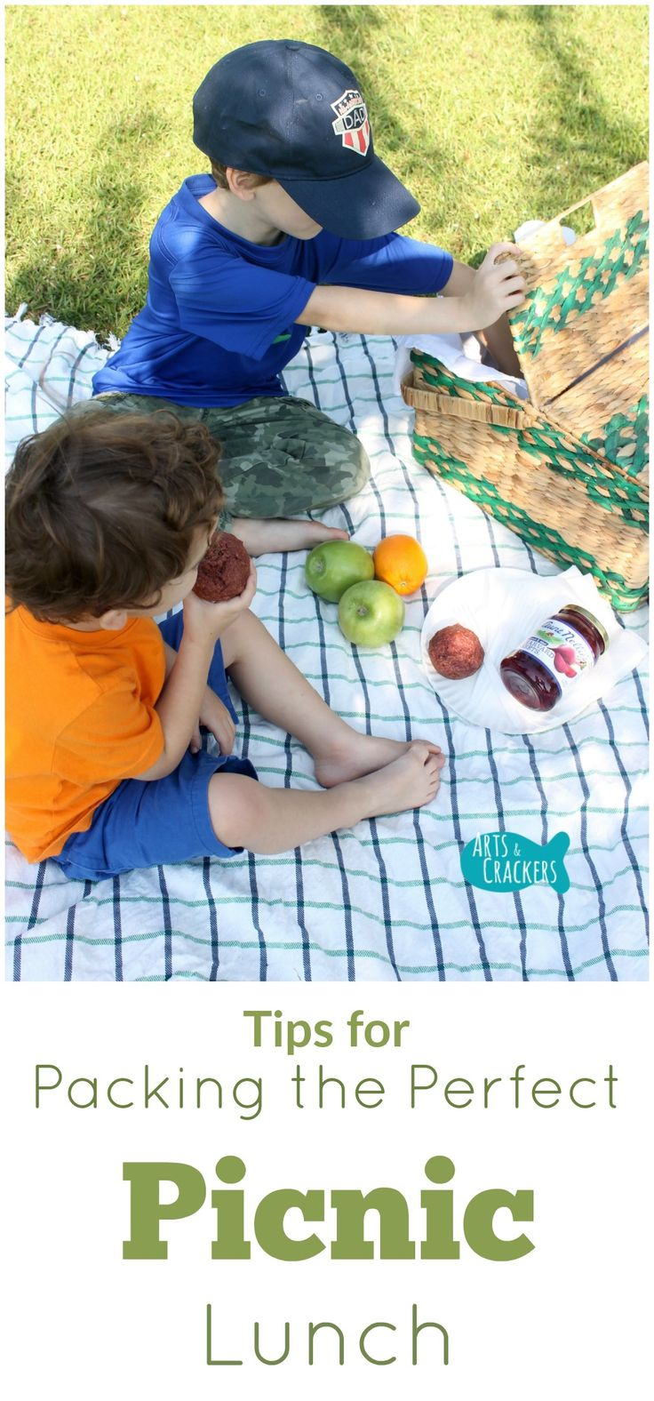 Tips for packing the perfect picnic lunch--find out what to pack and how to make the most of your picnic. Summertime  …