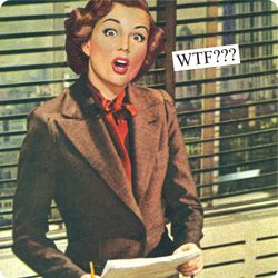 Magnets from Anne Taintor: WTF???