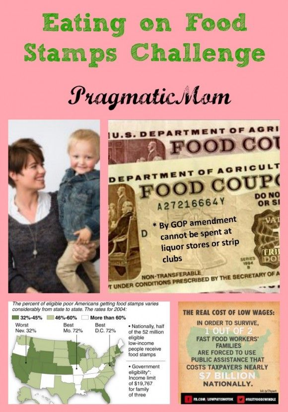 Embarking on the Food Stamps Diet Challenge. Can we eat on $1.40/per person per meal?  :: PragmaticMom
