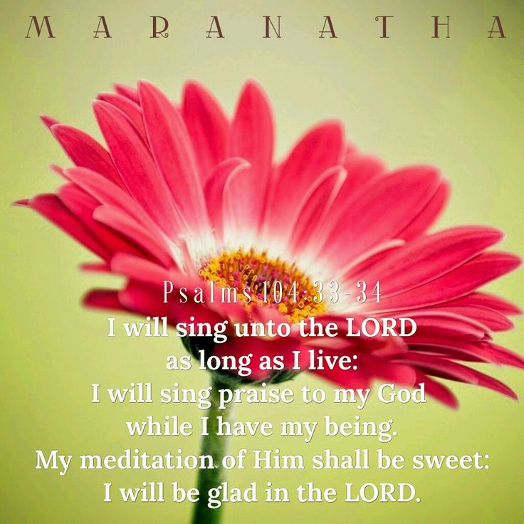 #Psalms 104:19-35 (KJV)    I will sing unto the LORD as long as I live: I will sing praise to my God while I have my being. My meditation of him shall be sweet: I will be glad in the LORD. Let the sinners be consumed out of the earth, and let the wicked be no more. Bless thou the LORD, O my soul. Praise ye the LORD.  #MARANATHA