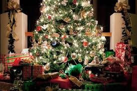 Image result for the littlest christmas tree play scripts