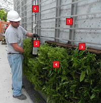 The Five Main Components Of A Green Wall Panel System
