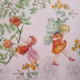 Browse shizuzuzuk's Instagram . 〔ロビンのピンクッションの妖精〕左側。 THE ROBIN'S PINCUSHION FAIRY. 〔みやこ草の妖精〕右側。 THE BlRD'S-FOOT TREFOIL FAIRY. . 夏っぽいカラーの妖精ちゃんにしました。 色は右の妖精の羽以外、ほぼ、お手本と一緒ですヽ(´▽`)/。 . . 前回のpostで、別アカウント作る方法を教えて下さった方々、ありがとうございました(,,> <,,)♡。 無事に作れそうです!! 本当に感謝です❣❣。 . . 今日の新潟は長岡花火と言う、大きい花火大会があるけど 私は一度も行った事がないです(..)。 フェニックス、見てみたい~!. . . 2016/8/2。 . #flowerfairies #シシリーメアリーバーカー #lineartbook #フラワーフェアリーズ #コロリアージュ #大人の塗り絵 #大人のぬりえ #색칠공부 #著色 #著色本 #colorpencil #coloringbooks #coloriage #coloringbook…