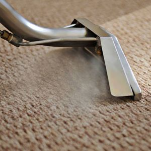 carpet cleaning ipswich queensland